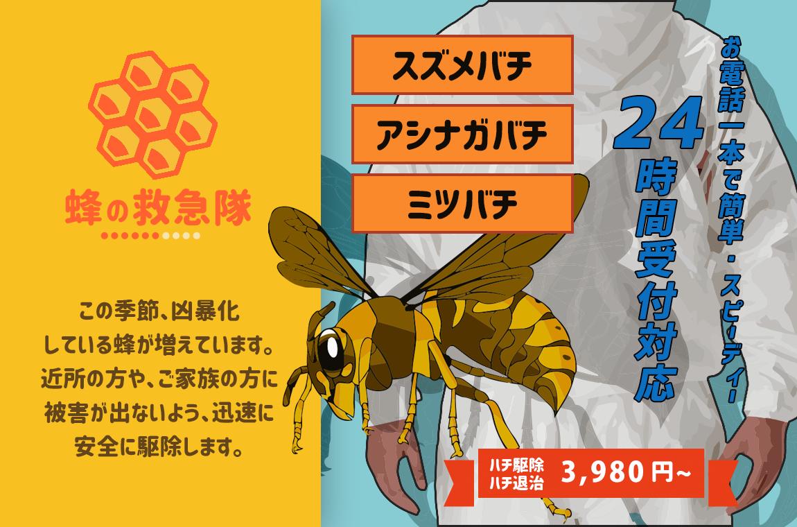 24時間受付対応!スズメバチ・アシナガバチ・ミツバチを安全に駆除します
